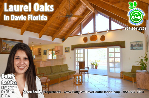 Laurel Oaks Luxury Homes For Sale