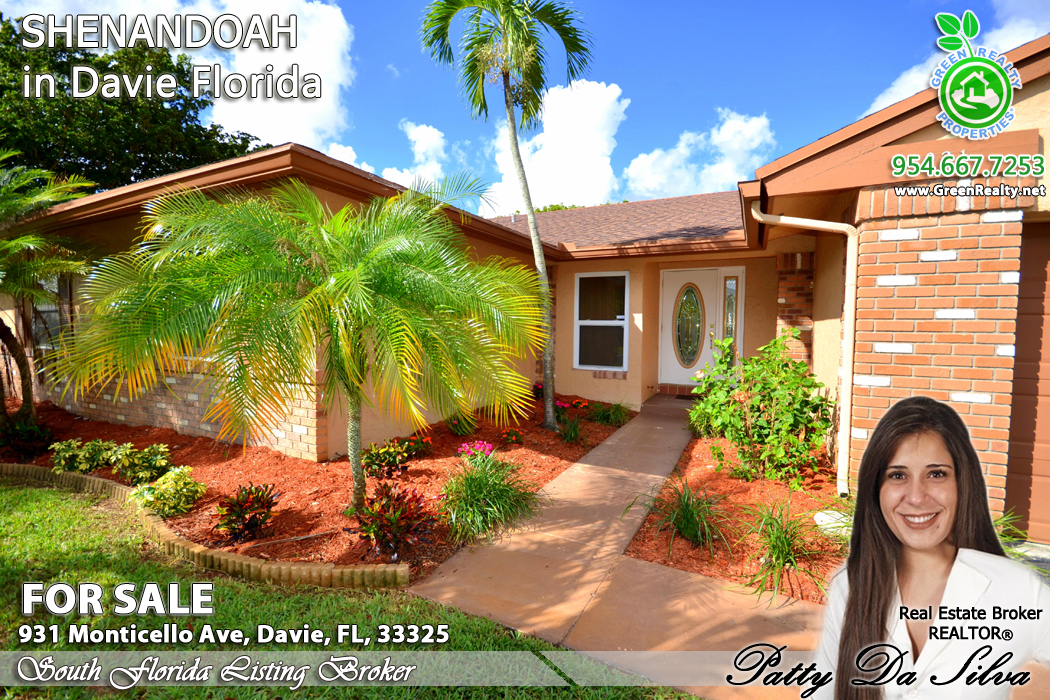 Davie Homes For Sale in Shenandoah