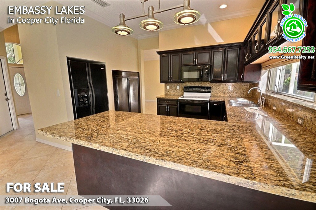 Embassy Lakes Florida Homes For Sale