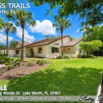 9214 Winding Woods Dr Lake - Home Photos (28)
