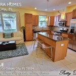 4368 Cascada Cir, Cooper City FL (7)